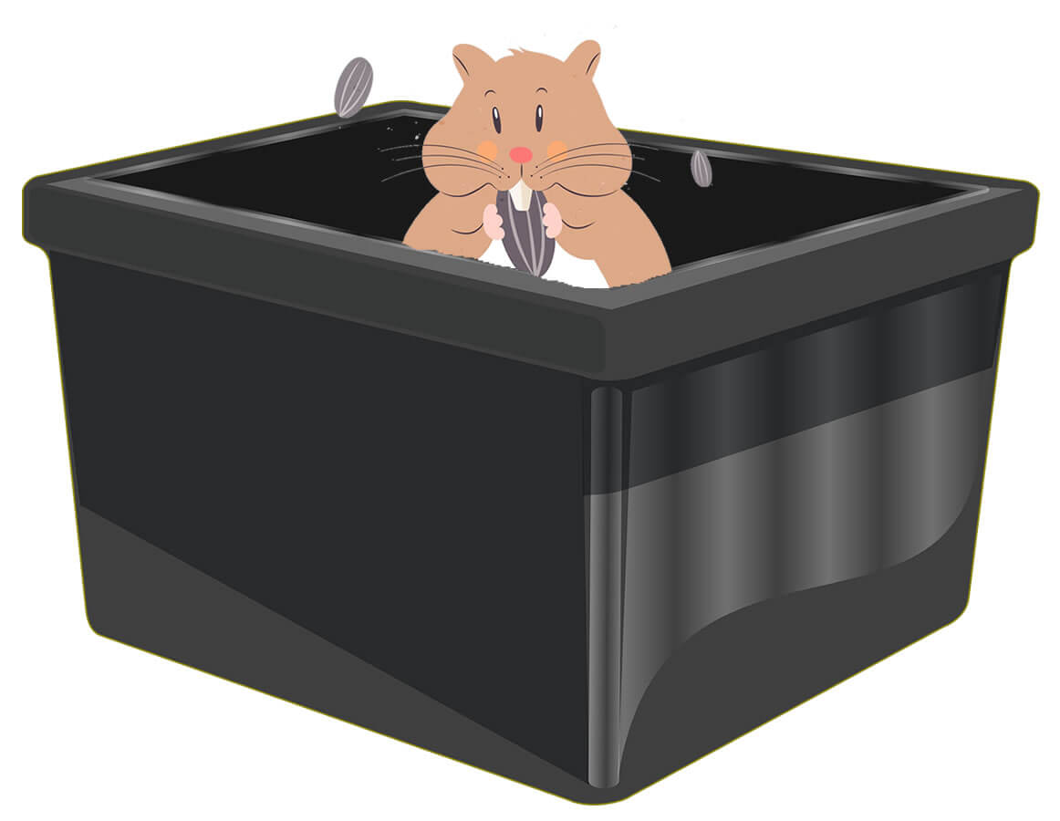 Temporary hamster Playbox
