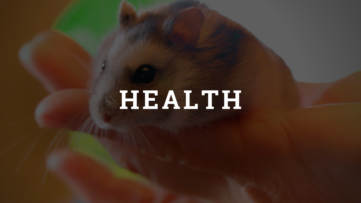 Hamster Health Category